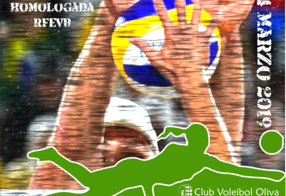 Cartel torneo Voley Playa invierno 2019 FVBCV